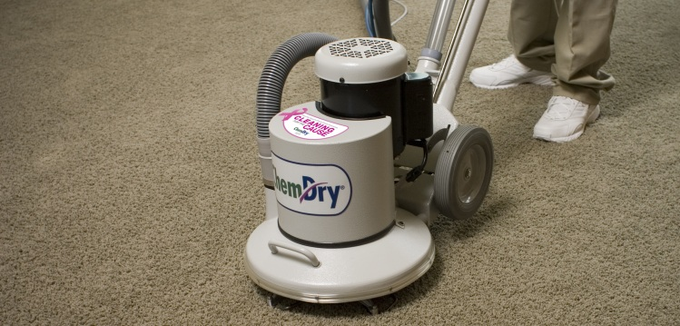 Professional Carpet Cleaning Chem Dry By Whalen Services
